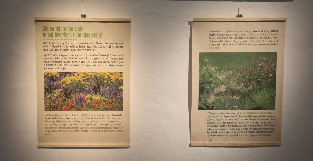 Opening of the exhibition: Unused Potentials of Invasive Alien Plant Species